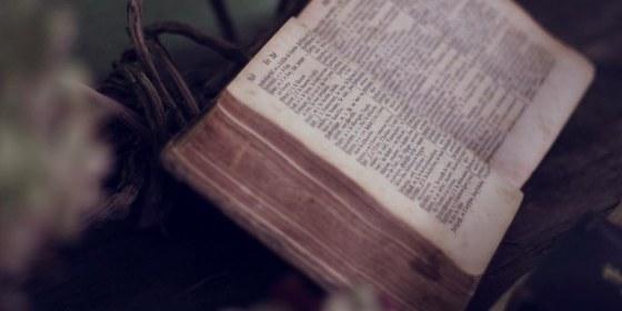 Biblia-entre-flores.jpg